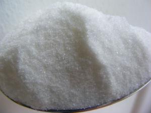 MSG Carp Bait Salt Monosodium Glutamate